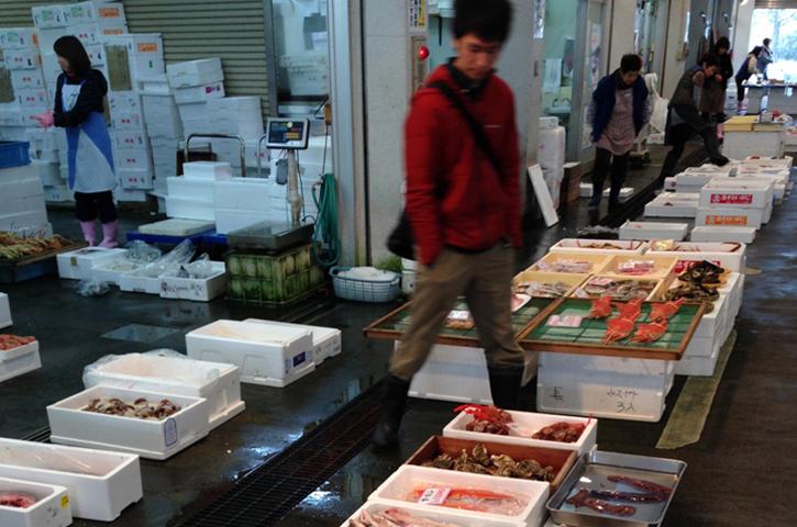 食育:魚市場見学とお魚料理