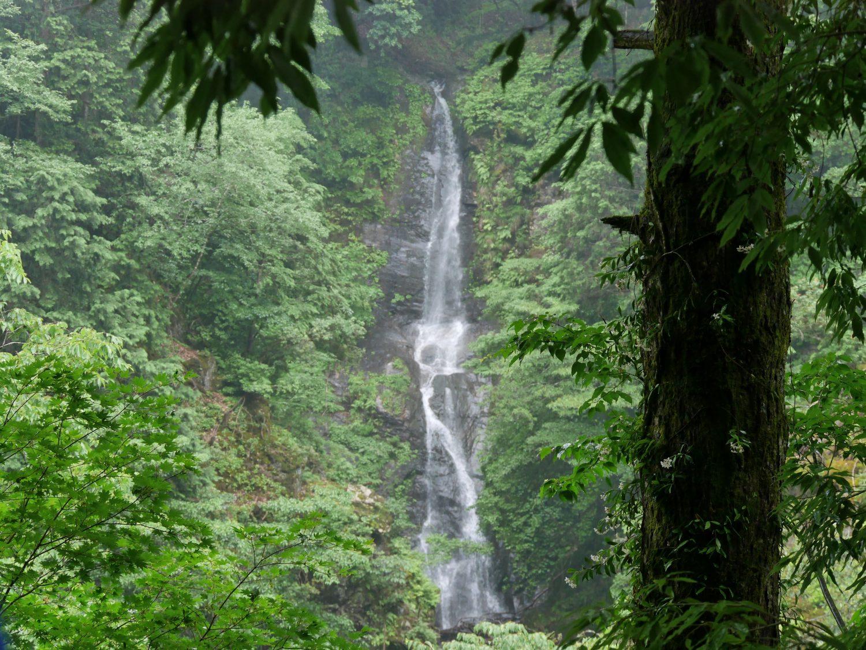 秘境の滝ハイキング